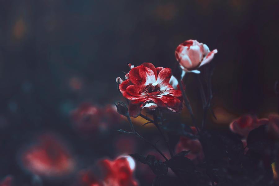 Until you fall by EmiNguyen