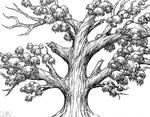Tree-Project-5