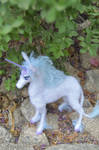 The Last Unicorn II