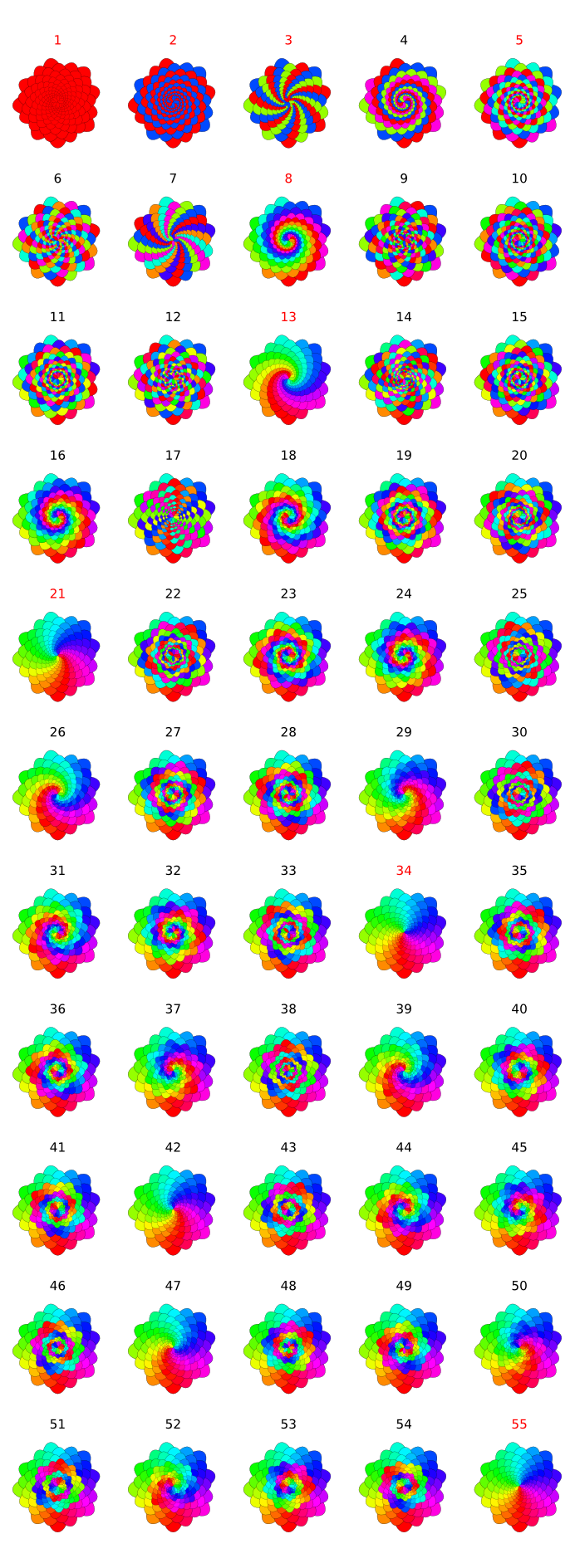 Flower Spirals by Hai-Etlik