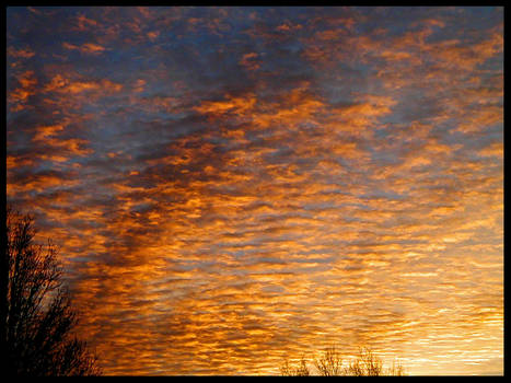 A sky of gold