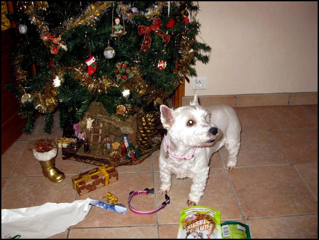Last Christmas by Serra-Tayanami