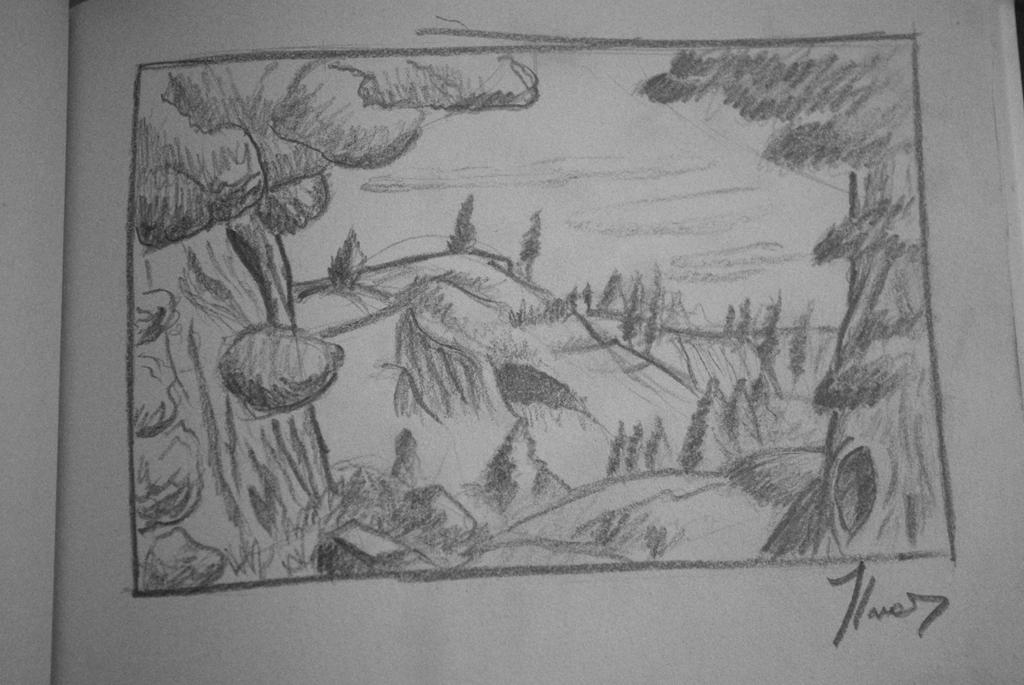 forest sketch by BranBolger