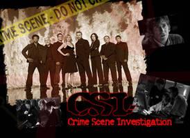 CSI by PeaceLova13