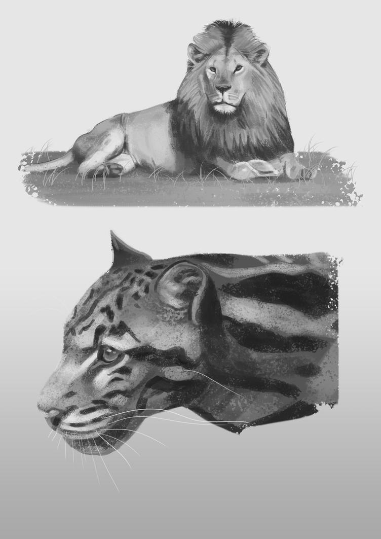 Big Cats by nicart9
