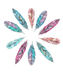 Feathers PNG