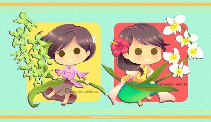 Malay Orchidia by Siripikan