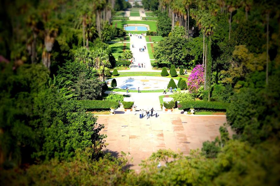 Jardin d 39 essai du hamma a alger algeria by thetrial26 on for Art du jardin zbinden sa