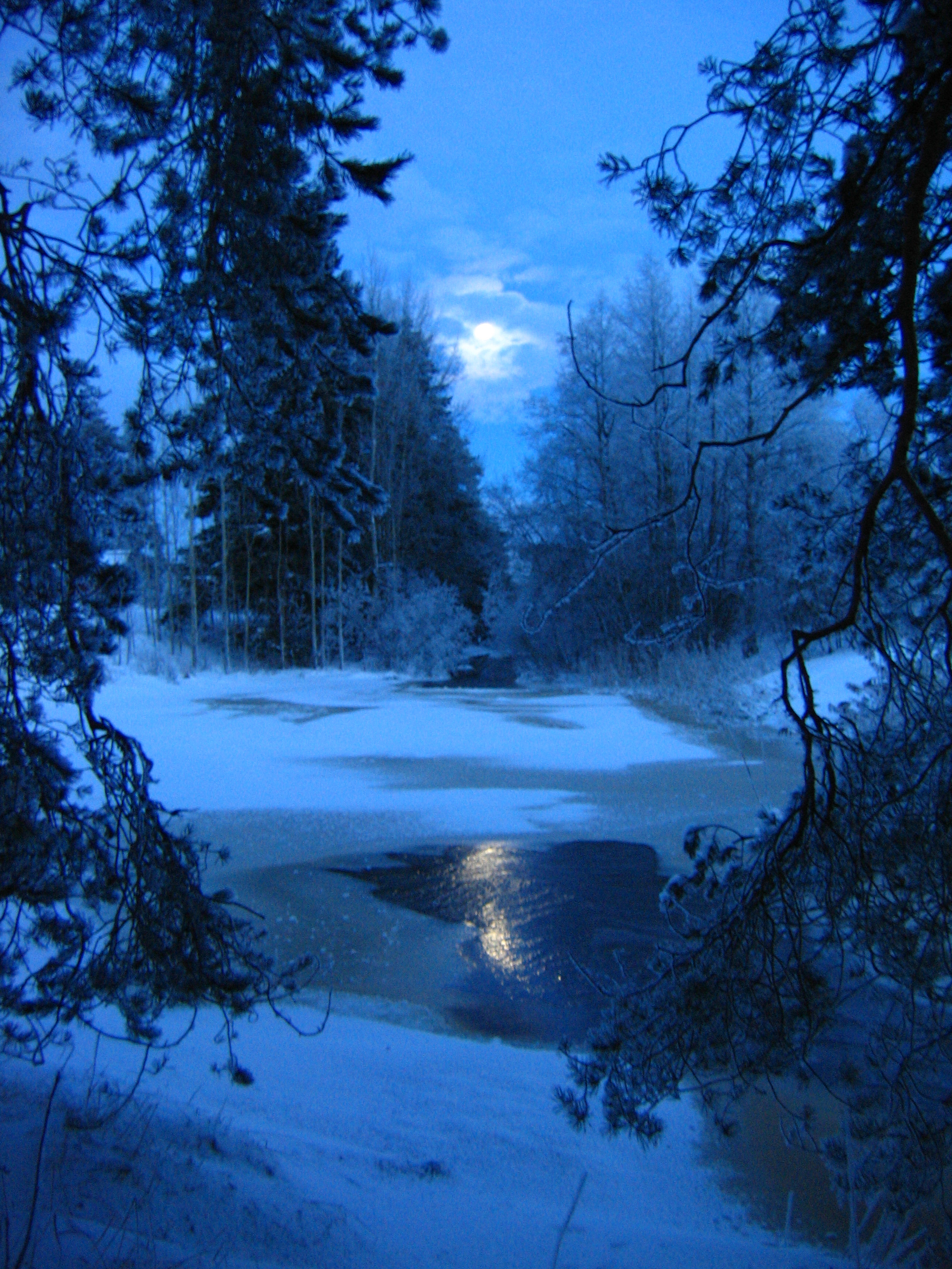 winterBlue Moonlight by const7