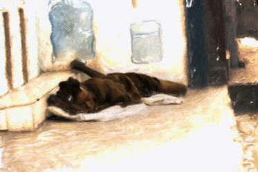 Homeless Haitian Girl Sleeps by madetobeunique
