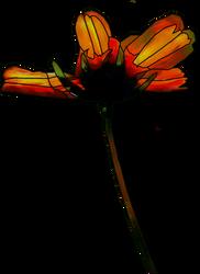 unique flower png clipart by madetobeunique