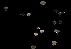 bunch swarm of butterflies PNG