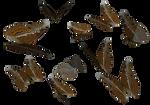 Admiral butterflies clipart