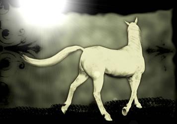 New Stock!  Digital White Horse Print