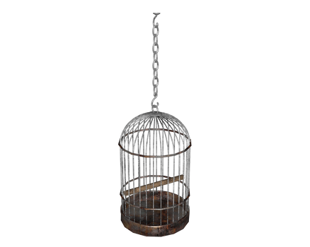other hanging birdcage 3d bars