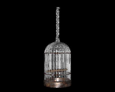 hanging side round birdcage