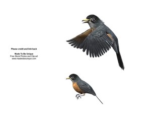 Robin birds flying 3d cut-out