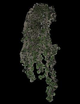 3D transparent vines plant