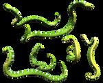 Slithering Green Snake Python