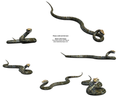 Realistic 3d Python Snake Stck by madetobeunique