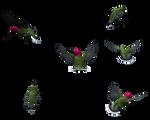 Free Bird Stock Hummingbird
