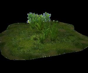 Free Stock - Grassy Land