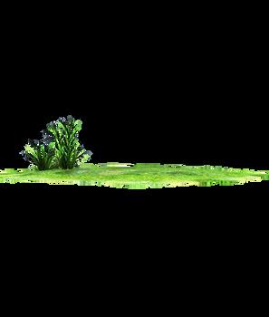 horizon grass lands stock png