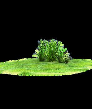 wonderful grass land accent
