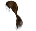 Stock Hair Images #3 long brown side ponytail
