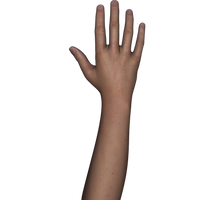 Free Stock Images Body Parts #1 hand n arm