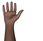Free Stock Images Body Parts #3 hand n arm