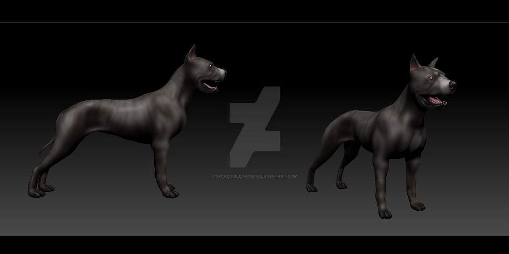 American Staffordshire 3D-Modell by IncredibleNacho