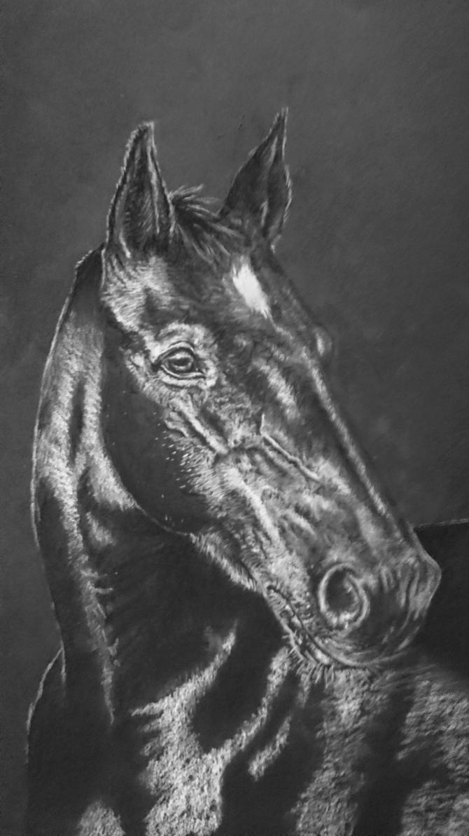 Horse Portrait by IncredibleNacho