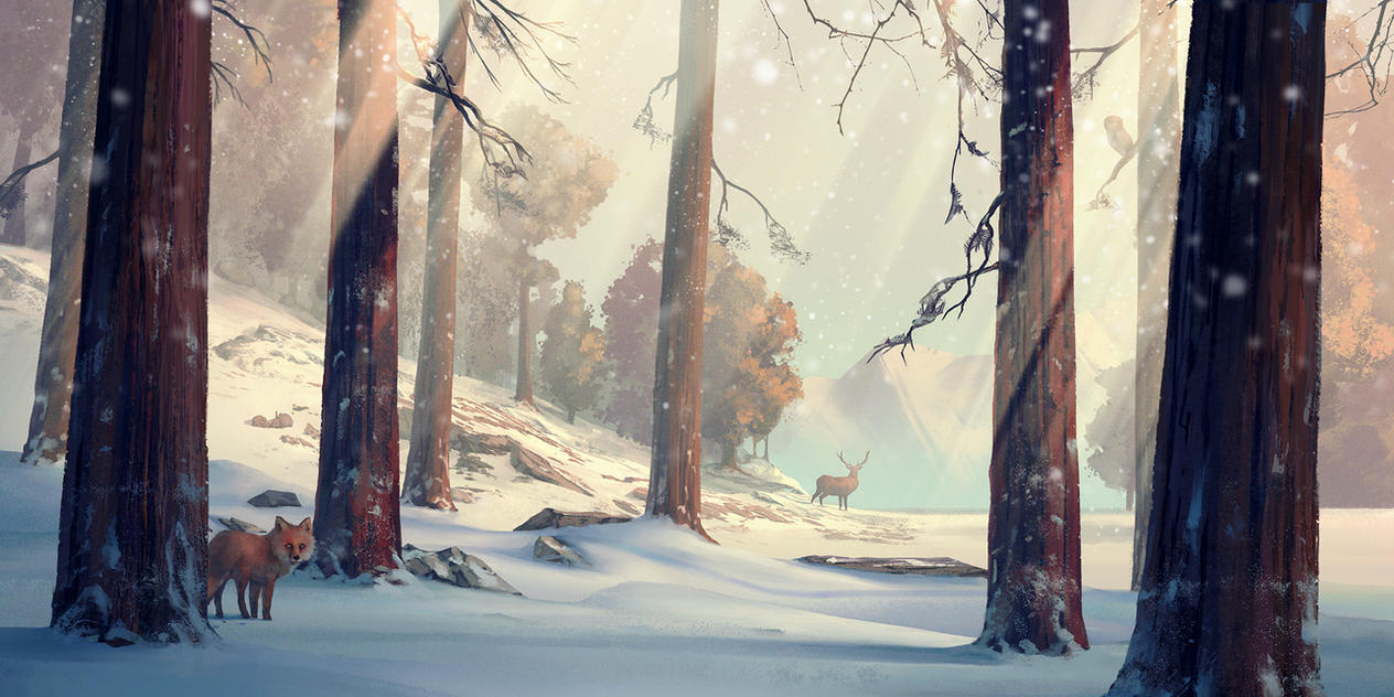 Winter forest by HjalmarWahlin