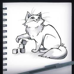 Cats dont Build
