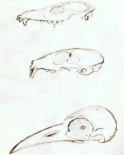 Sketches  by ItsFunToFantasize