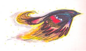 Raven Phoenix