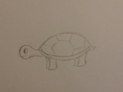CDC June 17 - 29 - Turtle
