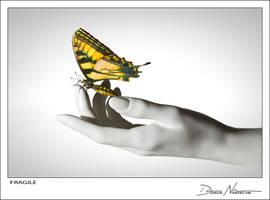 Fragile by Davenit
