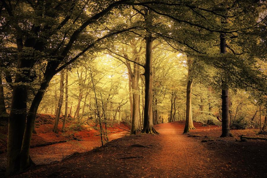 A Fairy Tale Ending by Chopen