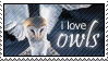 Owls by paramoreSUCKS