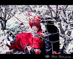 Spring from the wind3
