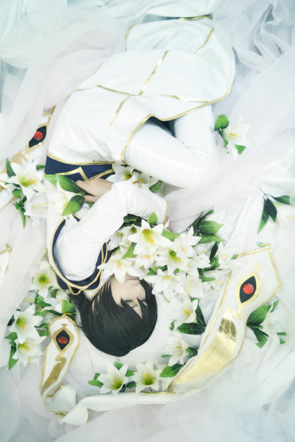 CODE GEASS_ Endless White by Dan-Gyokuei
