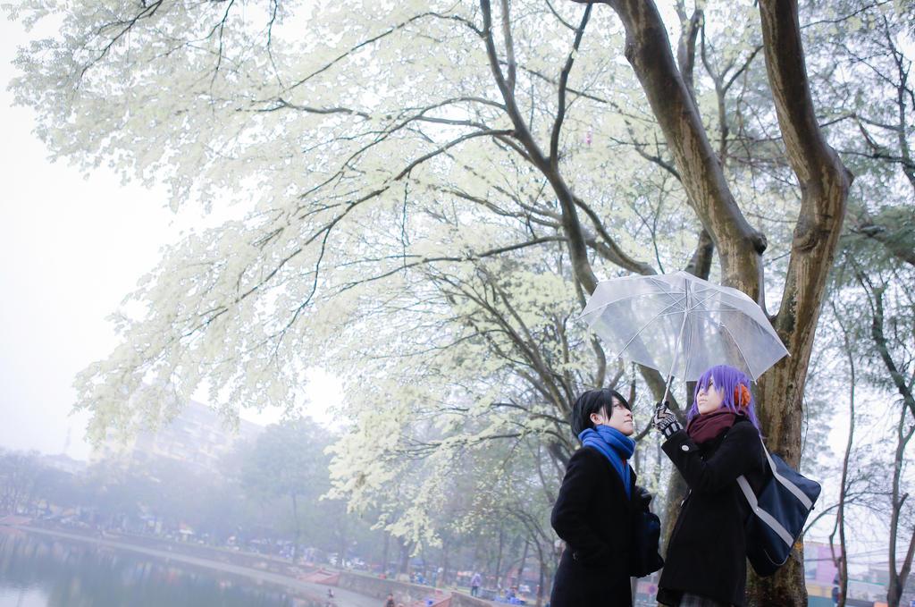 [KnB]White Valentine by Dan-Gyokuei