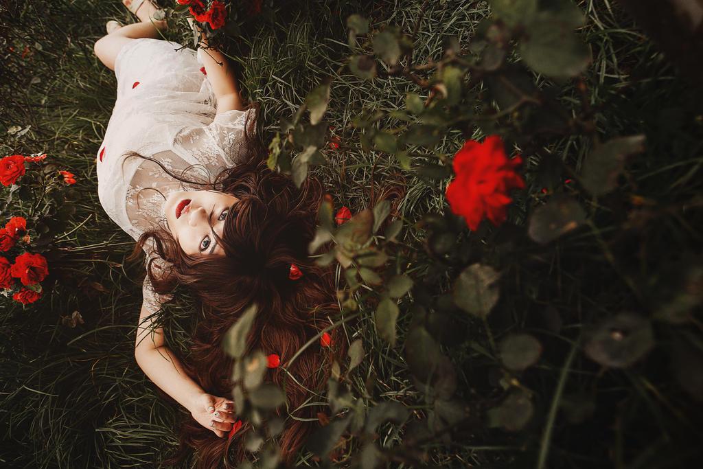 Where the wild roses grow by Dan-Gyokuei