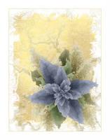 In Bloom by Funygrl