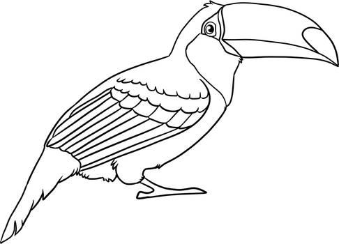 Free Toucan Lineart