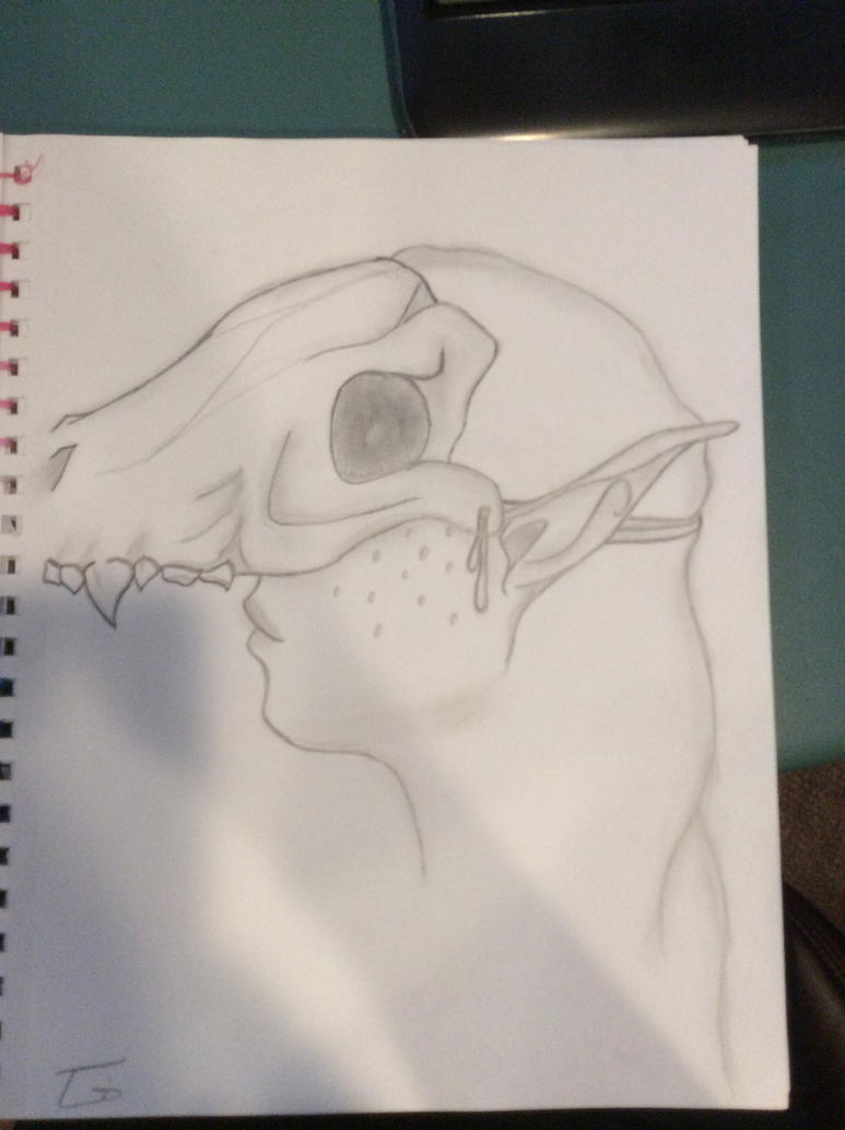 Skull Girl -WIP- by TiaothiniaSprite
