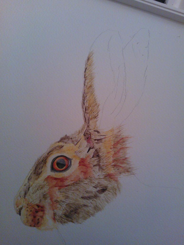 Watercolour Hare WIP #3 by WolfieSpirit9