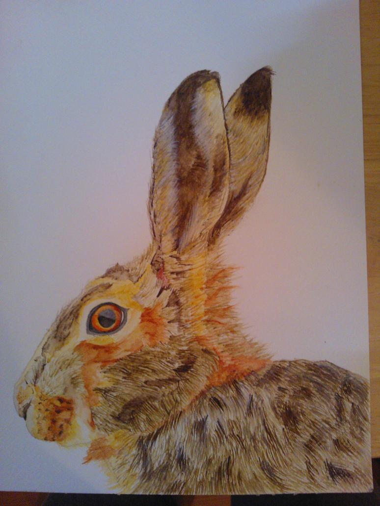 Watercolour Hare by WolfieSpirit9